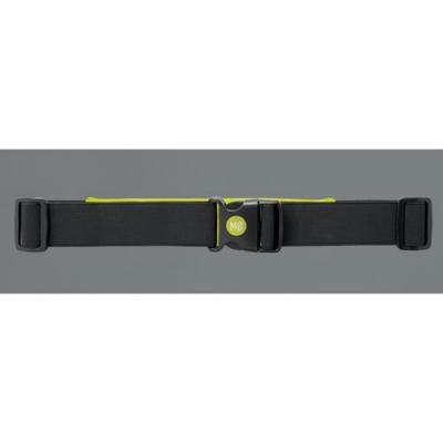 Image of Running waist belt with light